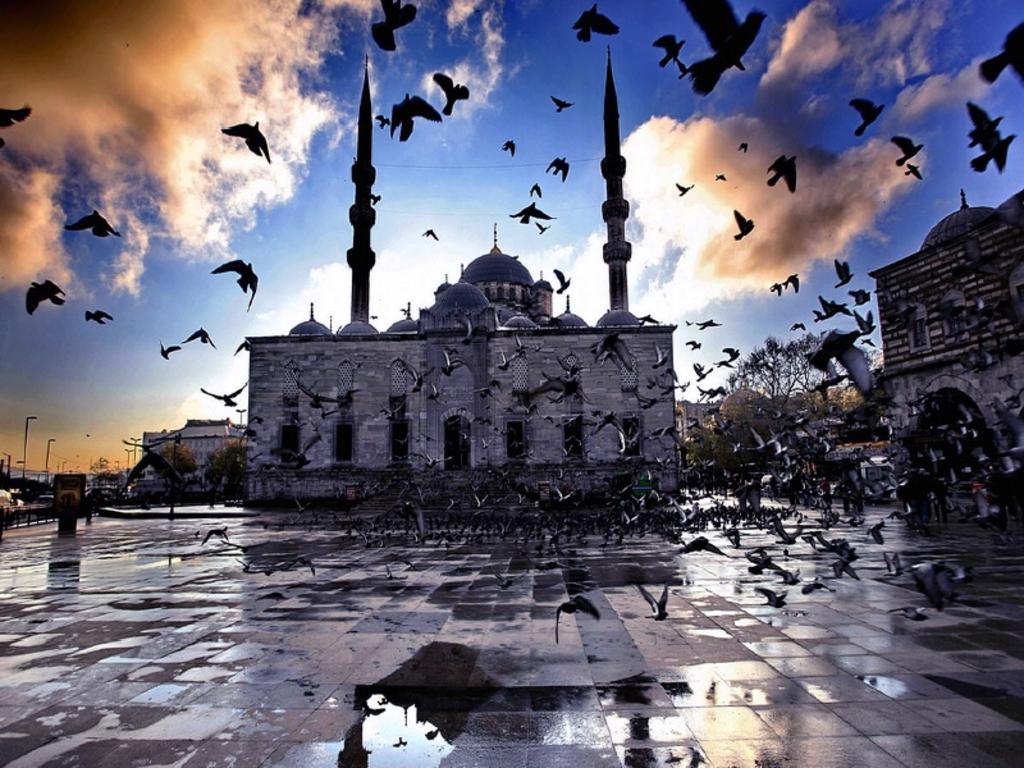 ISTANBUL - PUTOVANJE AUTOBUSOM - USKRS, PRVI MAJ CENE