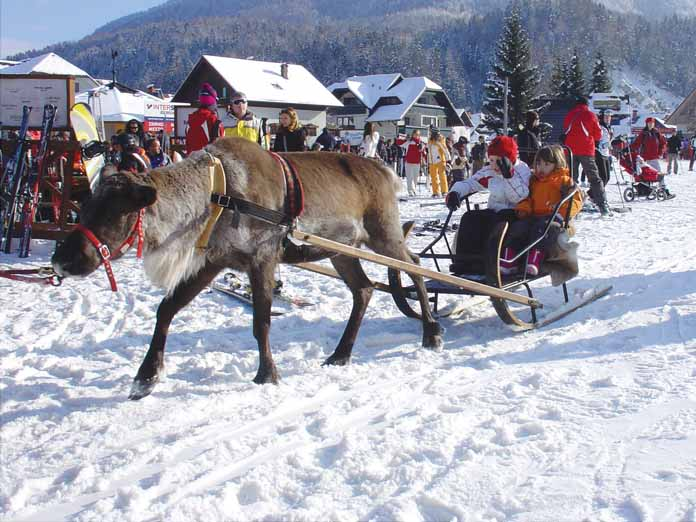 kranjska gora last minute ponude cene skijanje zimovanje