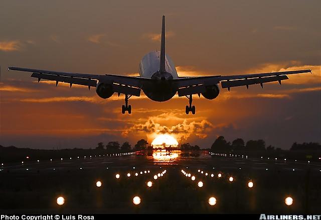 avio karte beograd njujork cene online rezervacija