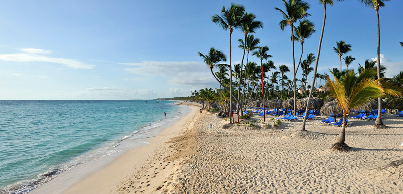 DOMINIKANA NOVA GODINA 2020