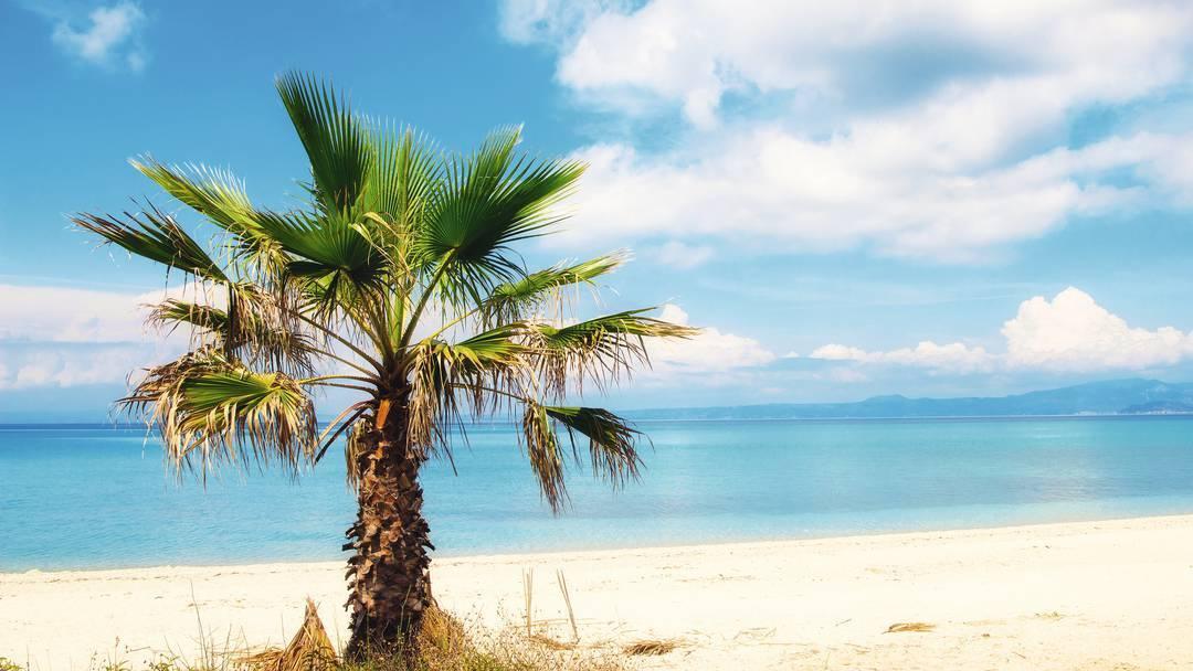 GRČKA HALKIDIKI HOTELI LAST MINUTE PONUDE