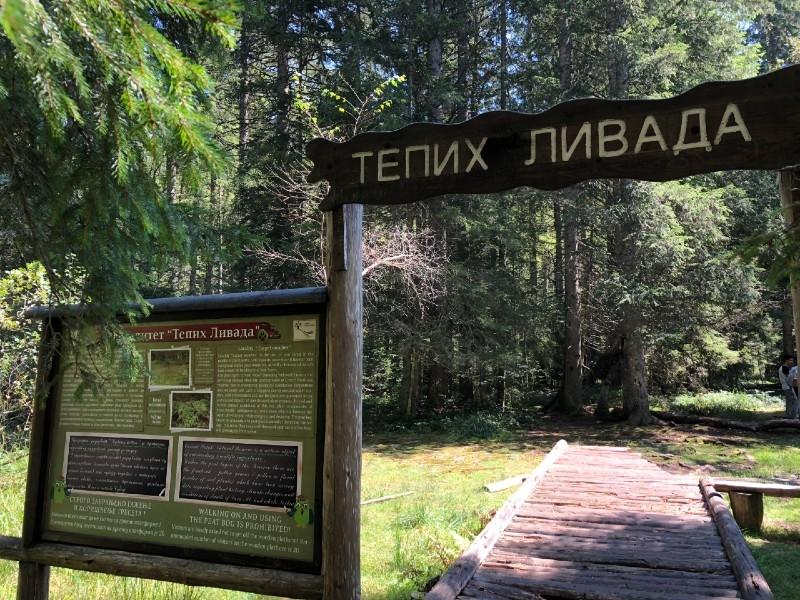 letovanje u srbiji tara cene aranzmana