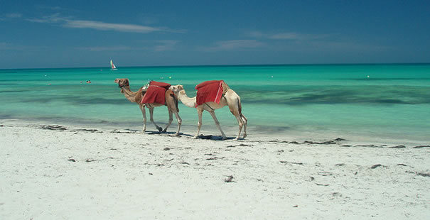 tunis last minute ponude monastir tunis hoteli cene leto aranzmani letovanje