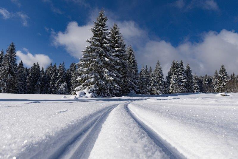austrija skijanje zimovanje u austriji