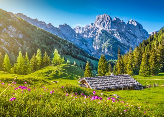 švajcarska tura ponude putovanje autobusom nova godina