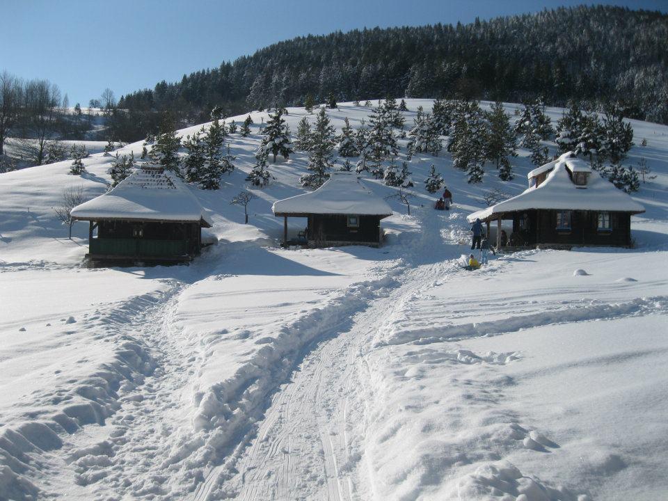 Zlatibor smestaj skijaliste zimovanje zlatibor