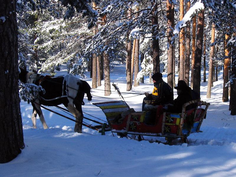 Zlatibor skijanje zimovanje last minute ponude
