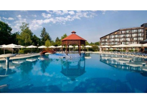 HOTEL TERMAL TERME 1000 MORAVSKE TOPLICE WELLNESS