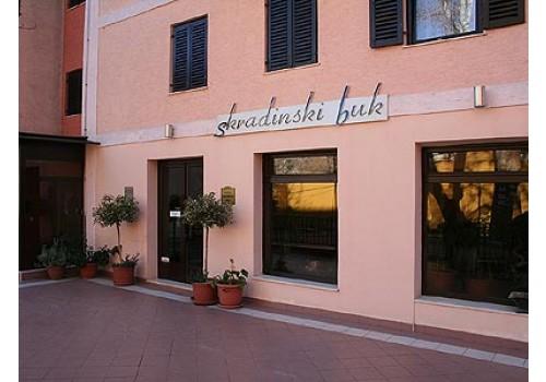 hoteli Skradinski Buk Dalmacija ponuda