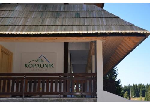 Hotel Vila Kopaonik skijanje zimovanje cene