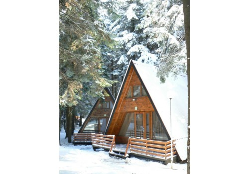 borovec bugraska ski ponuda zima cena