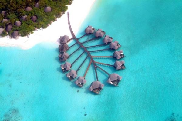 Hotel Coco Palm Dhuni Kolhu Maldivi