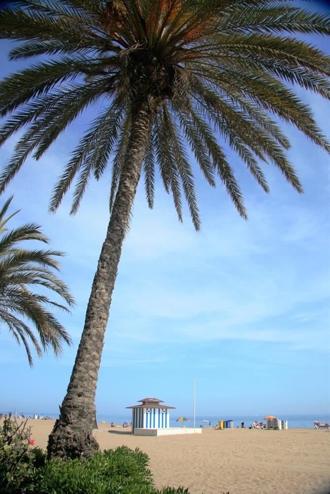 Kosta Dorada plaže letovanje Španija popusti