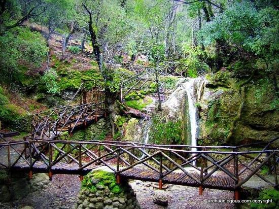 Dolina leptira (Petaloudes) - prirodni rezervat na ostrvu Rodos u Grčkoj