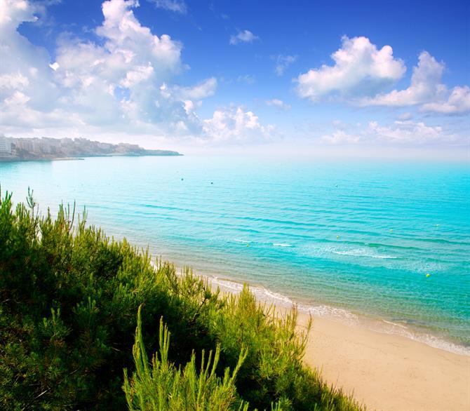 Kosta Dorada plaže letovanje cene aranžmana avionom